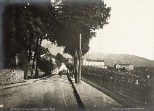Bergen around 1865, with Pleiestiftelsen for Spedalske Nr 1 and Lungegårdshospitalet visible in the background. (Photo: Bergen Byarkiv)