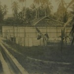 Pulau Jerejak,  women's camp, 1931.