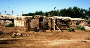 The leprosarium at Krantau, Uzbekistan. In 1996 these mud huts housed 105 patients.